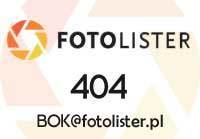 Silcare Chrome Silver Effect Powder 1g